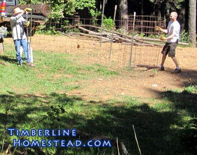 fencing-in-garden