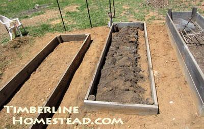spacing-garden-beds