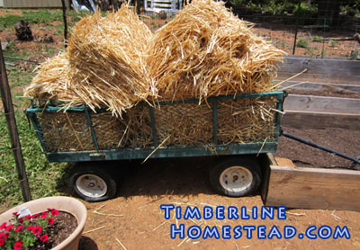 straw-in-garden-cart