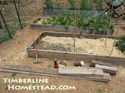 how-to-build-raised-beds