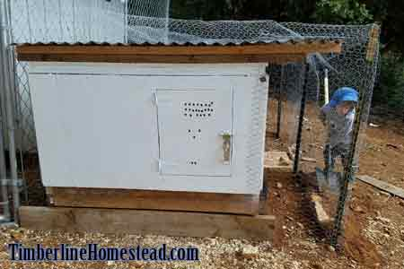 nursery-coop-for-chickens